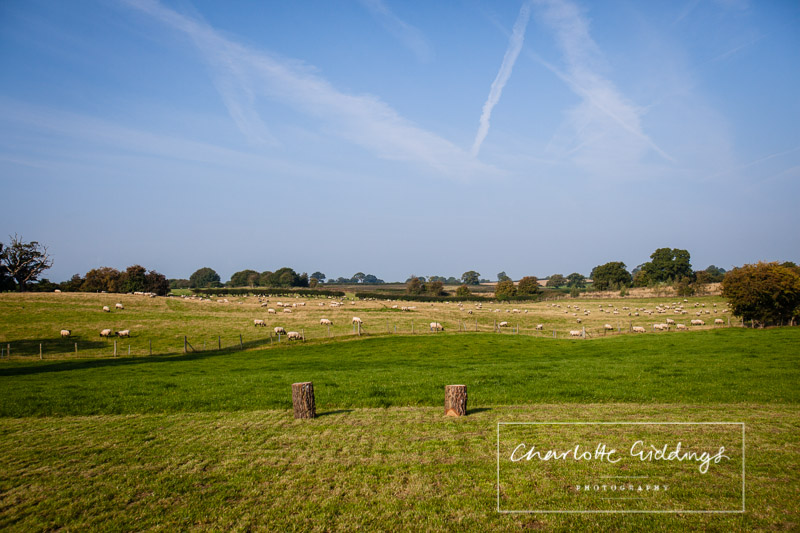 views from the shropshire marquee wedding looking over shropshire fields with sheep grazing
