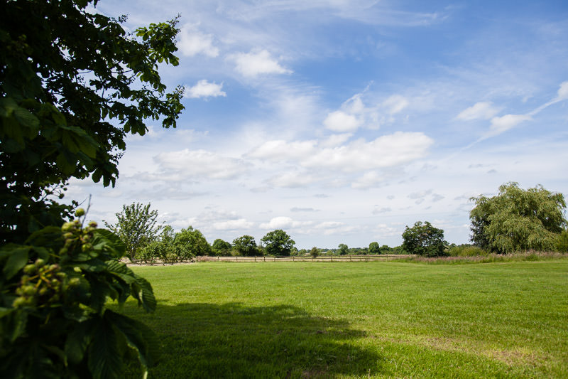 blue sky and open green space