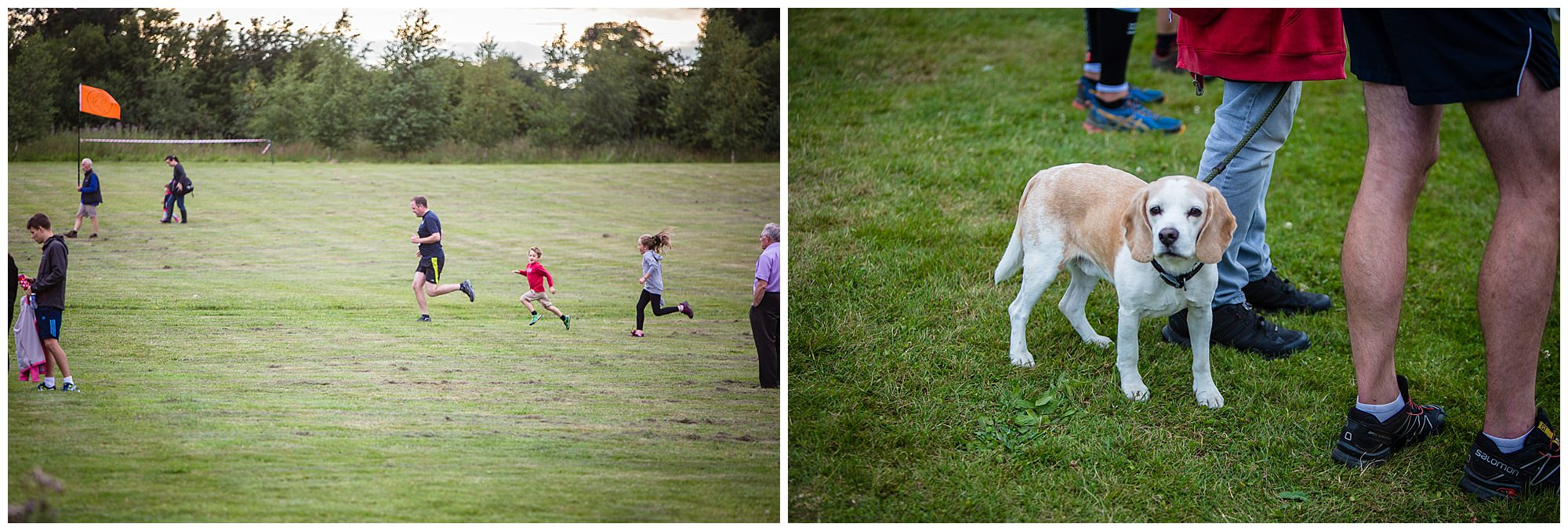 kids playing at whitchurch running event and dogs