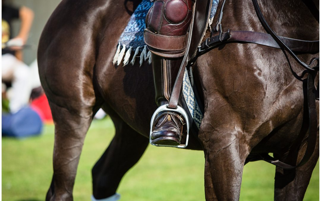 Boodles Roodee Challenge Cup Polo – Chester Race Course Photographer