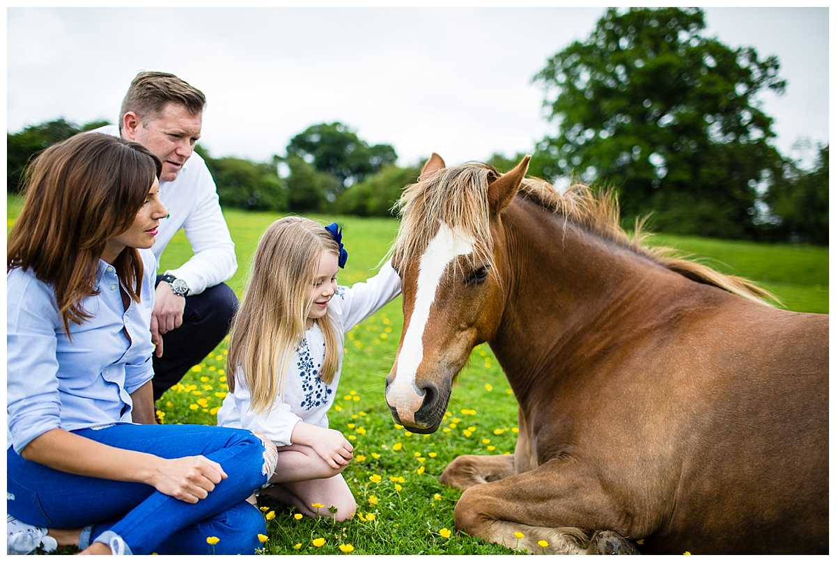 family sitting next to a horse giving it some attention in a field on whitchurch greenfields nature reserve