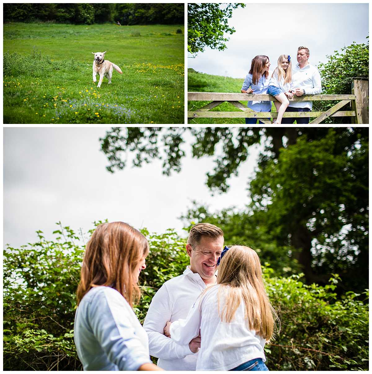 various shots of family of three interacting with each other and dog running towards them