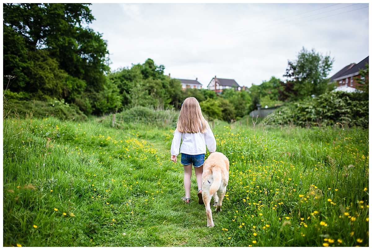 little girl walking along with her golden labrador - beautiful moment as they walk together