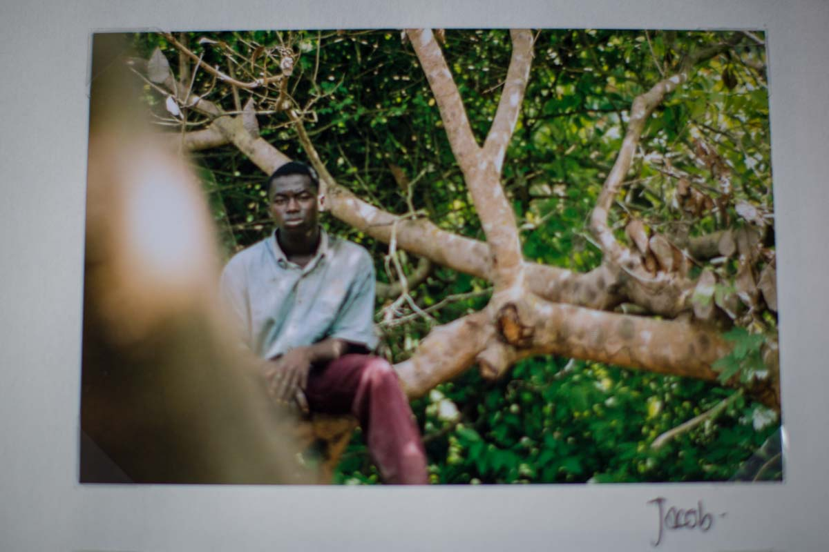 Ghanaian boy sitting in a tree with lots of greenery looking deep in thought