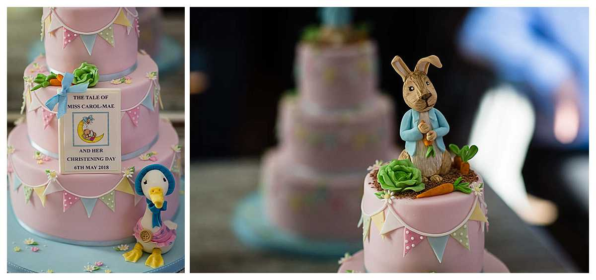 details of beatrix potter cake of jemima puddle duck and peter rabbit