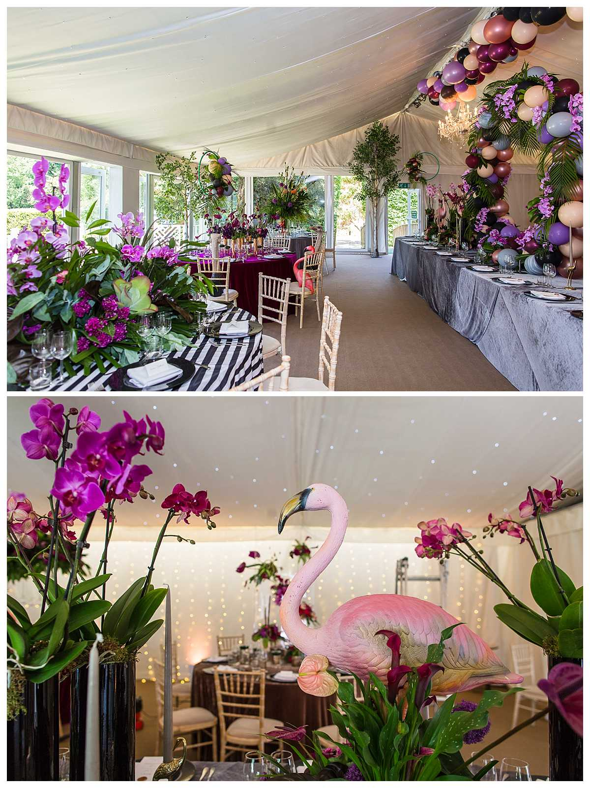 red floral set up in the marquee at iscoyd park with purple theme of orchids and peonies and flamingos